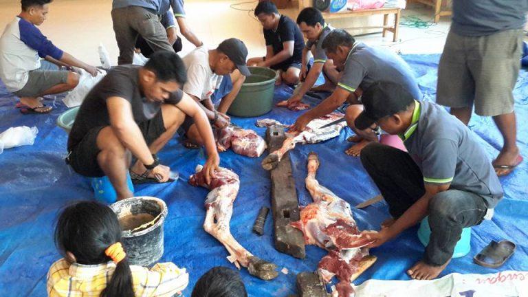 Mesjid Al Abrar potong 18 sapi 9 kambing
